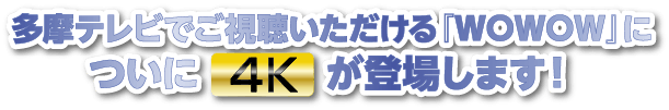 ×WOWキャンペーン(題)