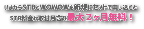×WOWキャンペーン(最大2ヶ月無料)