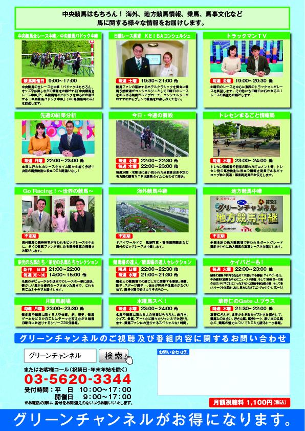 グリーンチャンネル価格変更2